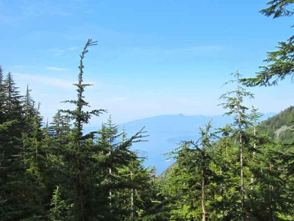 Glimpse of Howe Sound along the trail